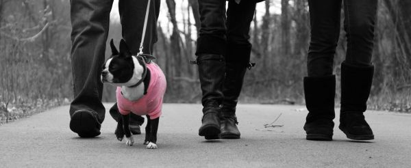 missy walk bw and pink