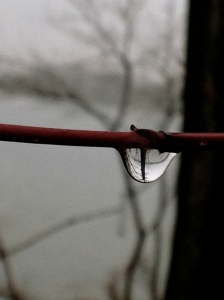 I can almost see the whole lake within this raindrop.