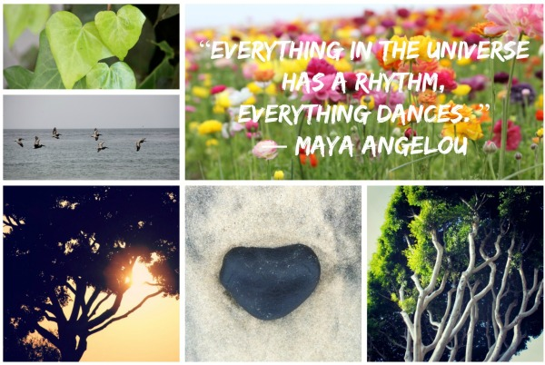 dance quote maya angelou