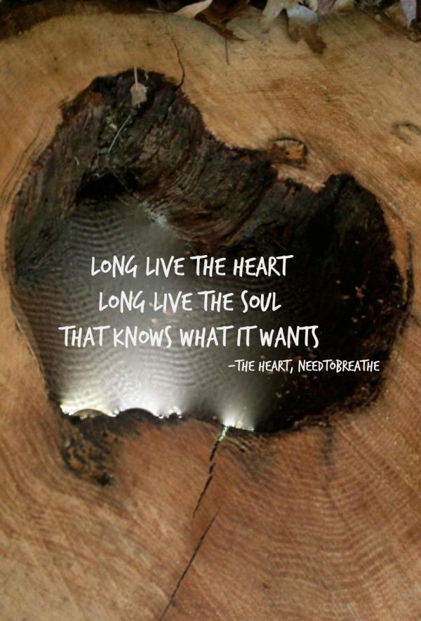 long live the heart lyric heart