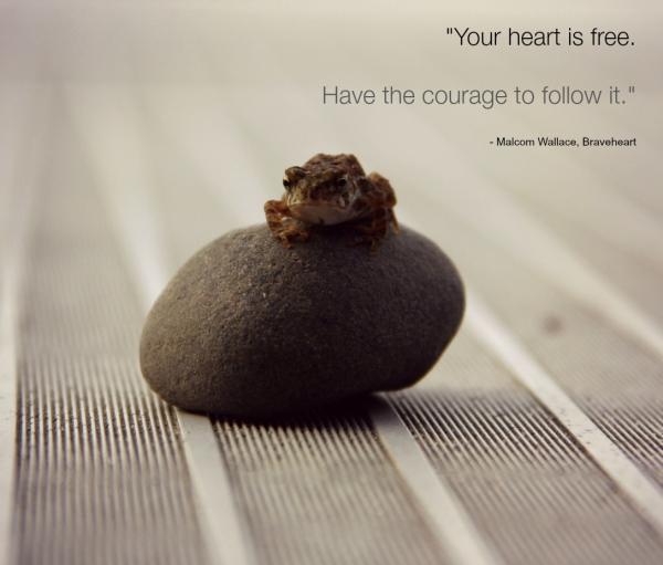 brave heart frog