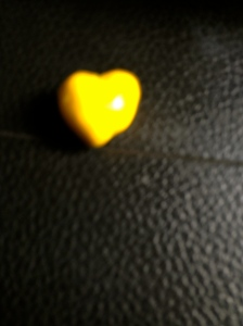 Photo credit: N.H., age 13.  He found a yellow M&M!!!