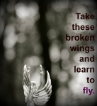 blackbird lyrics